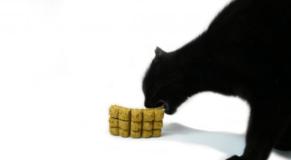 Freeze-Dried Pet Food