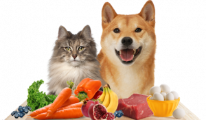 Humanfood for cats and dogs
